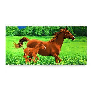 Ręcznik plażowy 70x145 cm - Brązowe Konie RPL-11